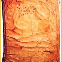 LibroBecerro3.jpg