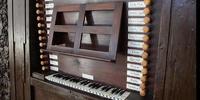 Organo3.jpg