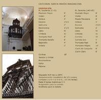 Organo5.jpg
